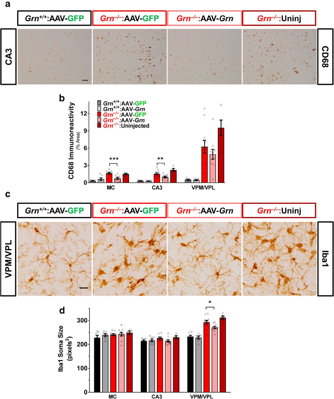 Progranulin Gene Therapy Improves Lysosomal Dysfunction and