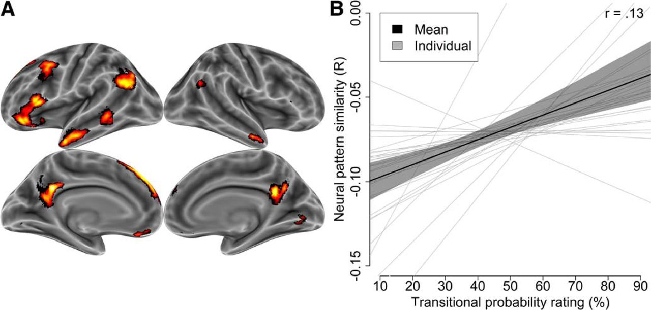 Brain Representations Of Social >> The Social Brain Automatically Predicts Others Future Mental States
