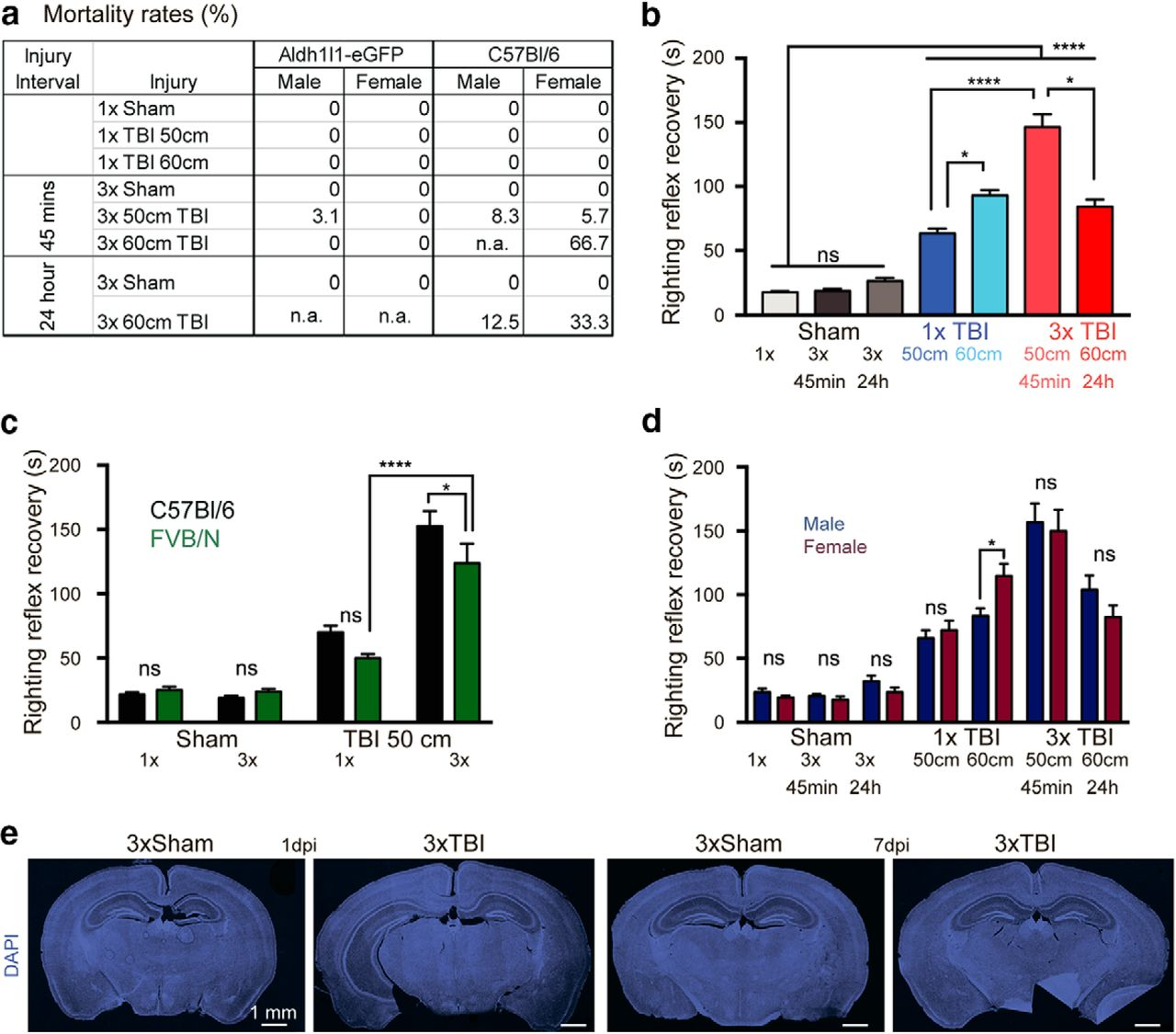 Repetitive Diffuse Mild Traumatic Brain Injury Causes an Atypical