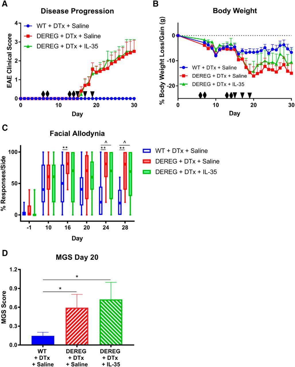 Regulatory T Cells And Their Derived Cytokine Interleukin