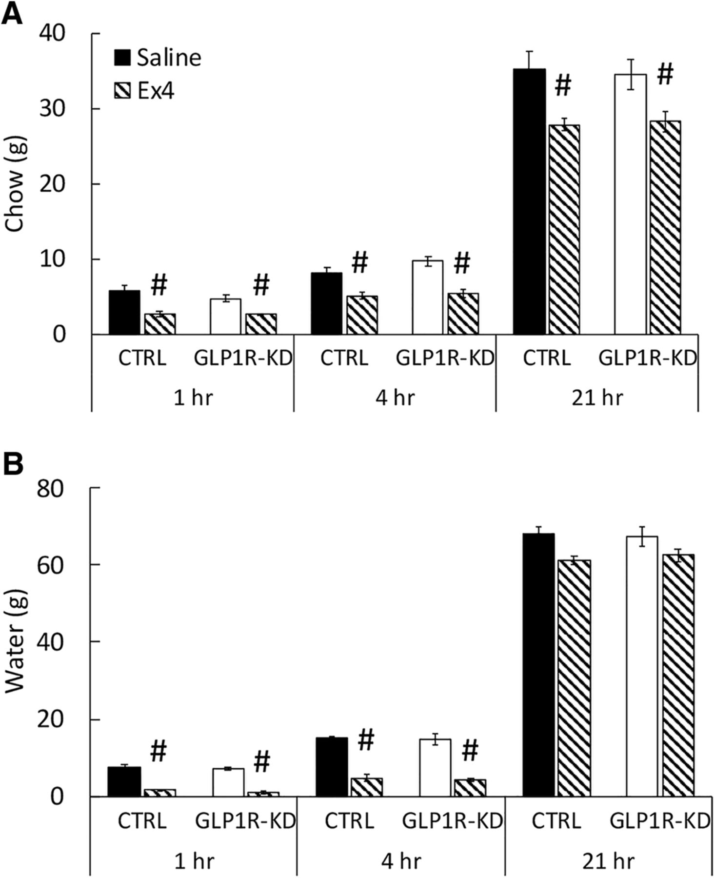 Chronic Suppression of Glucagon-Like Peptide-1 Receptor (GLP1R) mRNA