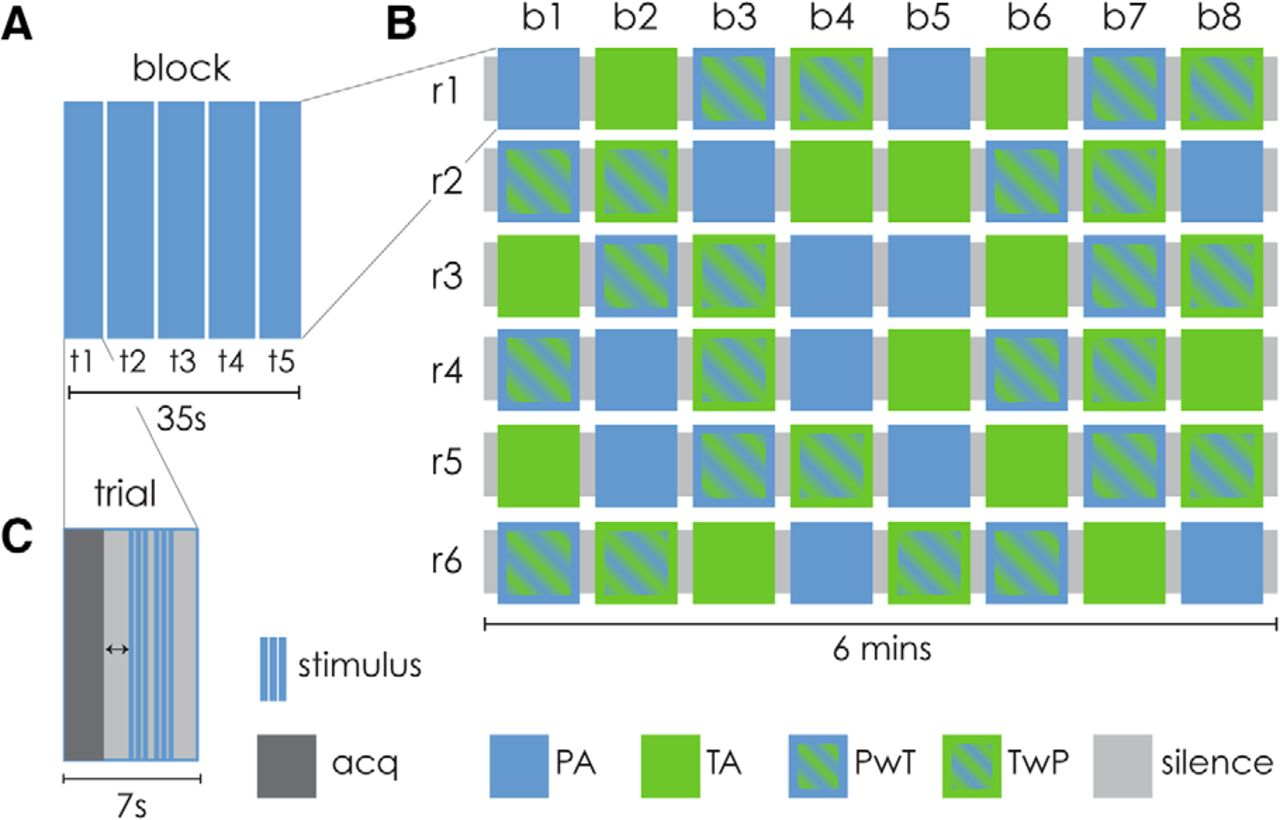 Cortical Correlates of Attention to Auditory Features