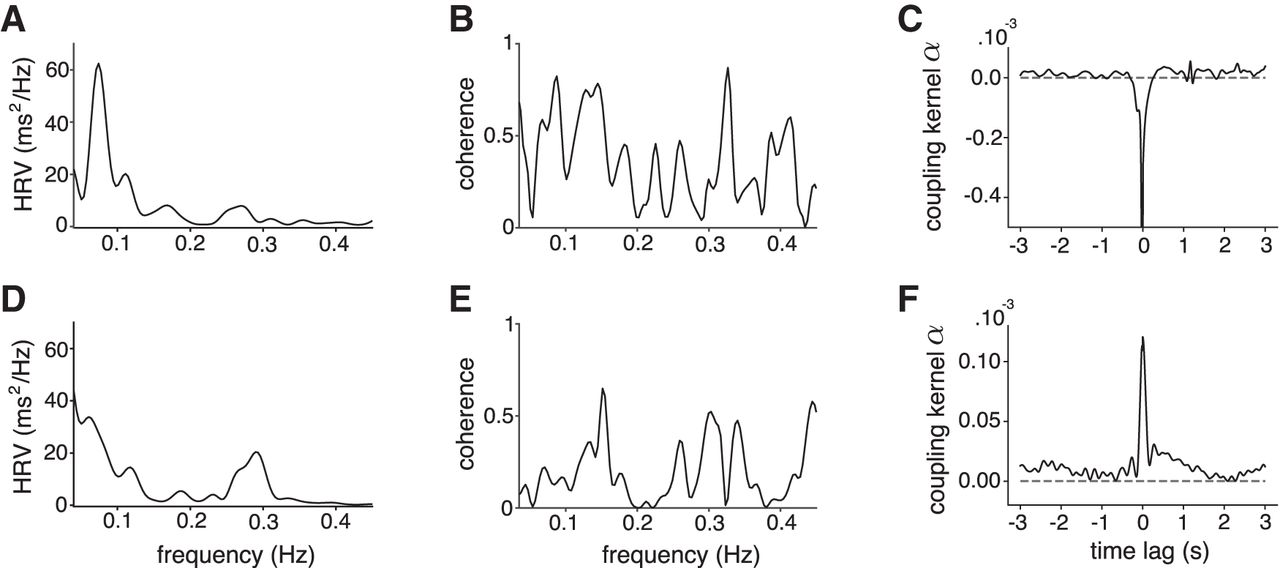 Resting-State Neural Firing Rate Is Linked to Cardiac-Cycle