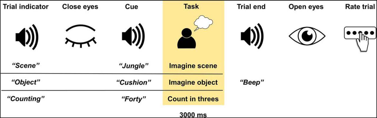The Neural Dynamics of Novel Scene Imagery | Journal of