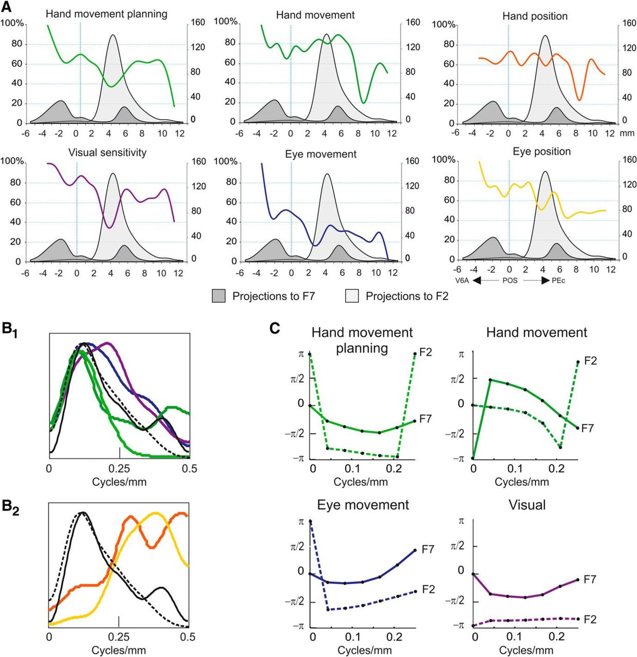 Corticocortical Systems Underlying High-Order Motor Control