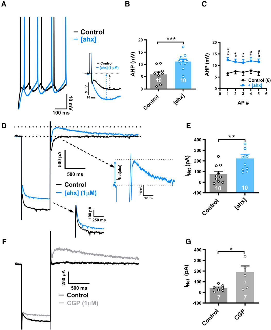 NPY2 Receptors Reduce Tonic Action Potential-Independent GABAB