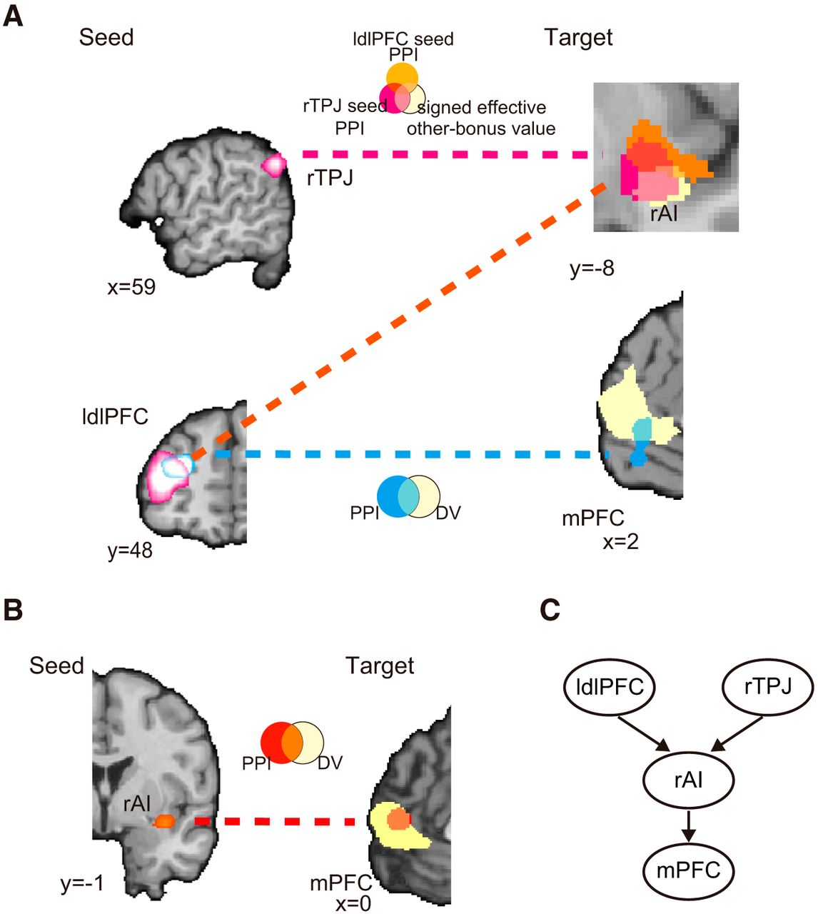 Computing Social Value Conversion in the Human Brain