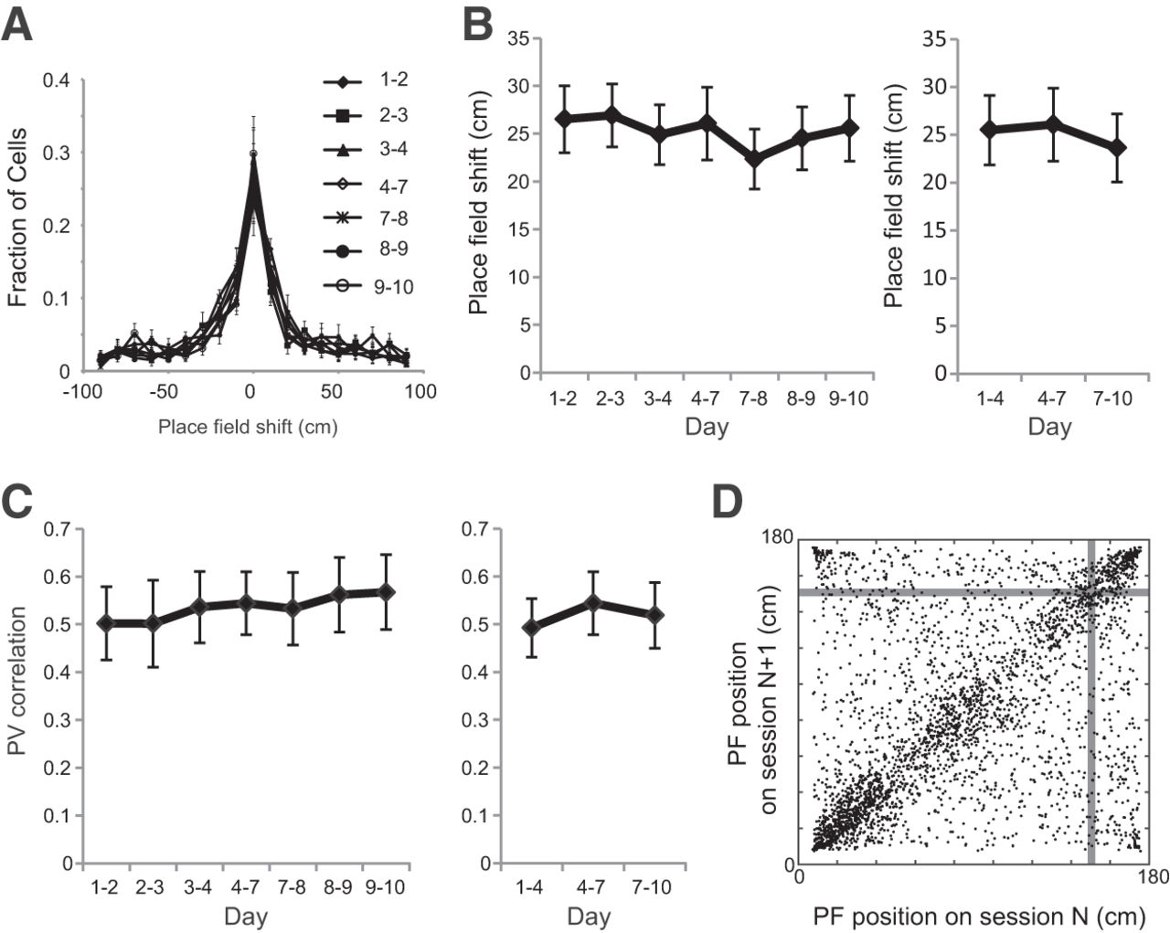 NMDA Receptor-Dependent Dynamics of Hippocampal Place Cell Ensembles