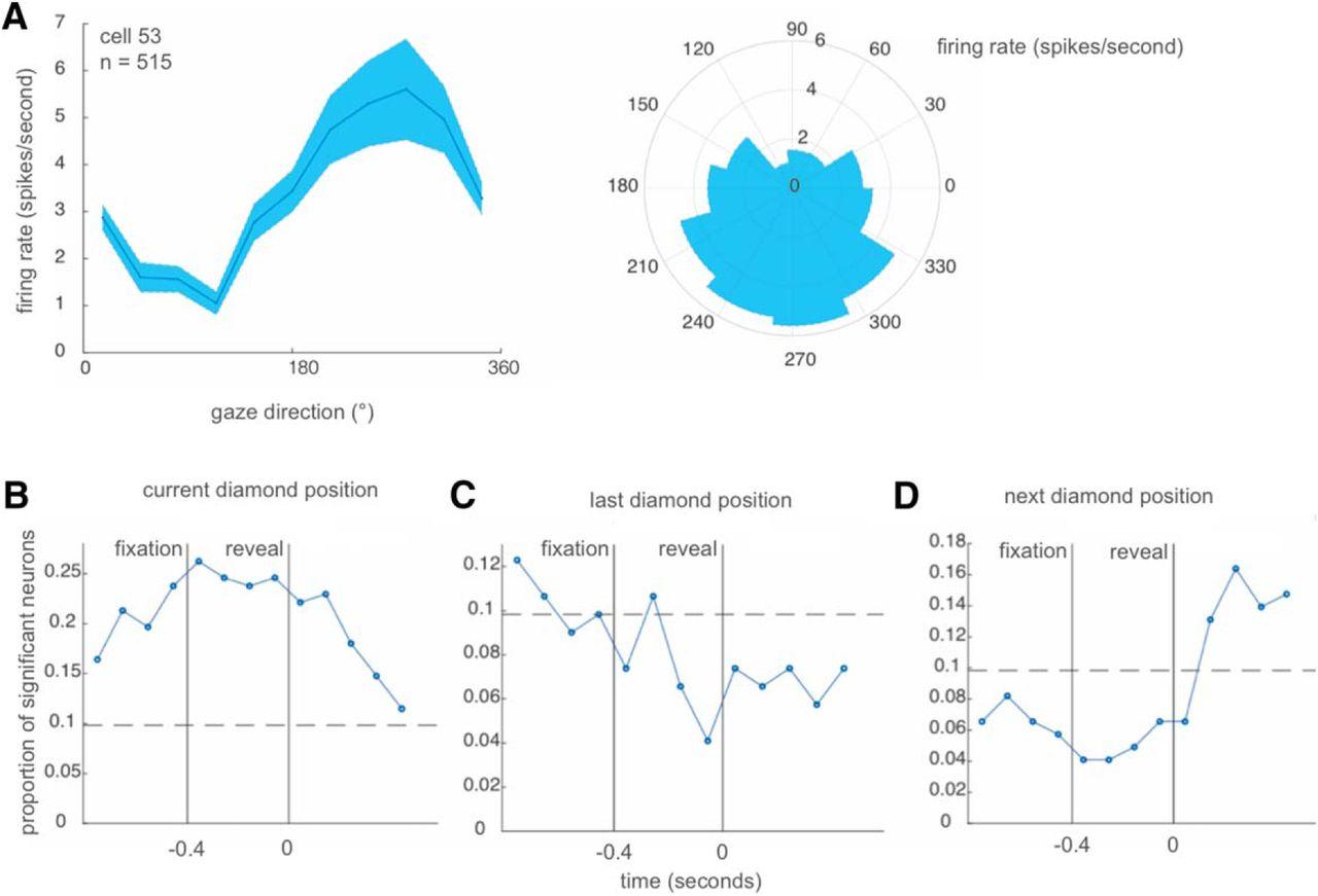 Ventromedial Prefrontal Cortex Tracks Multiple Environmental