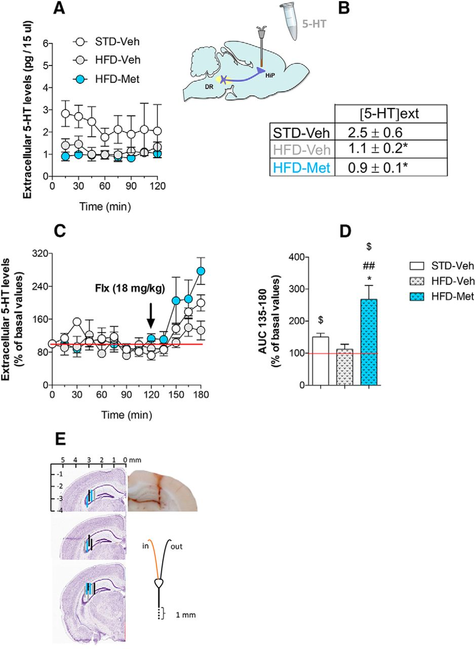 Metformin Promotes Anxiolytic and Antidepressant-Like Responses in