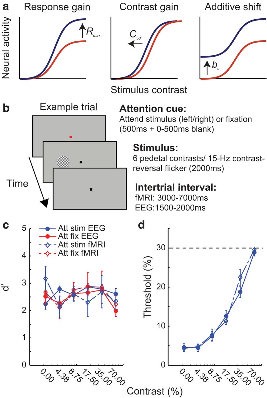 Functional MRI and EEG Index Complementary Attentional