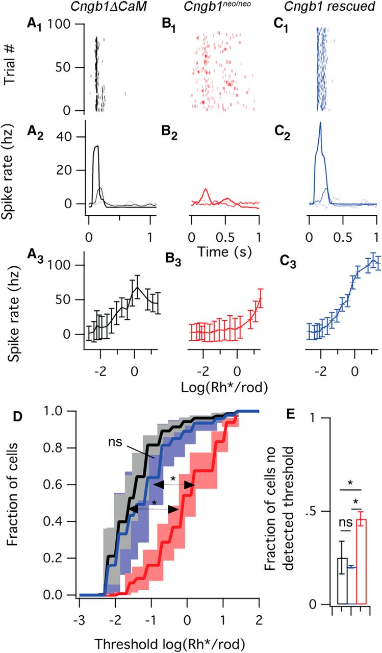 Activation of Rod Input in a Model of Retinal Degeneration ... on