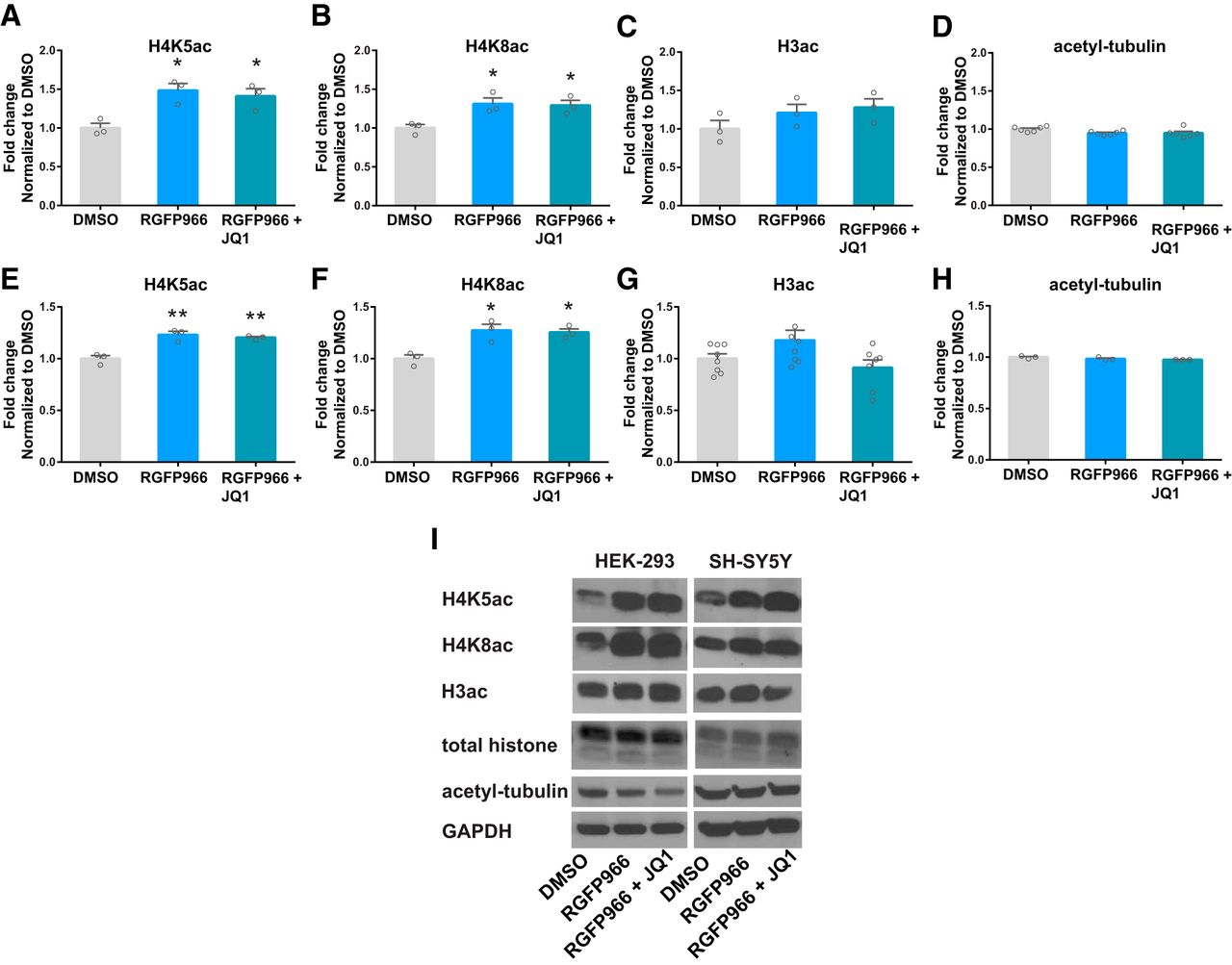 Enhancement of BDNF Expression and Memory by HDAC Inhibition