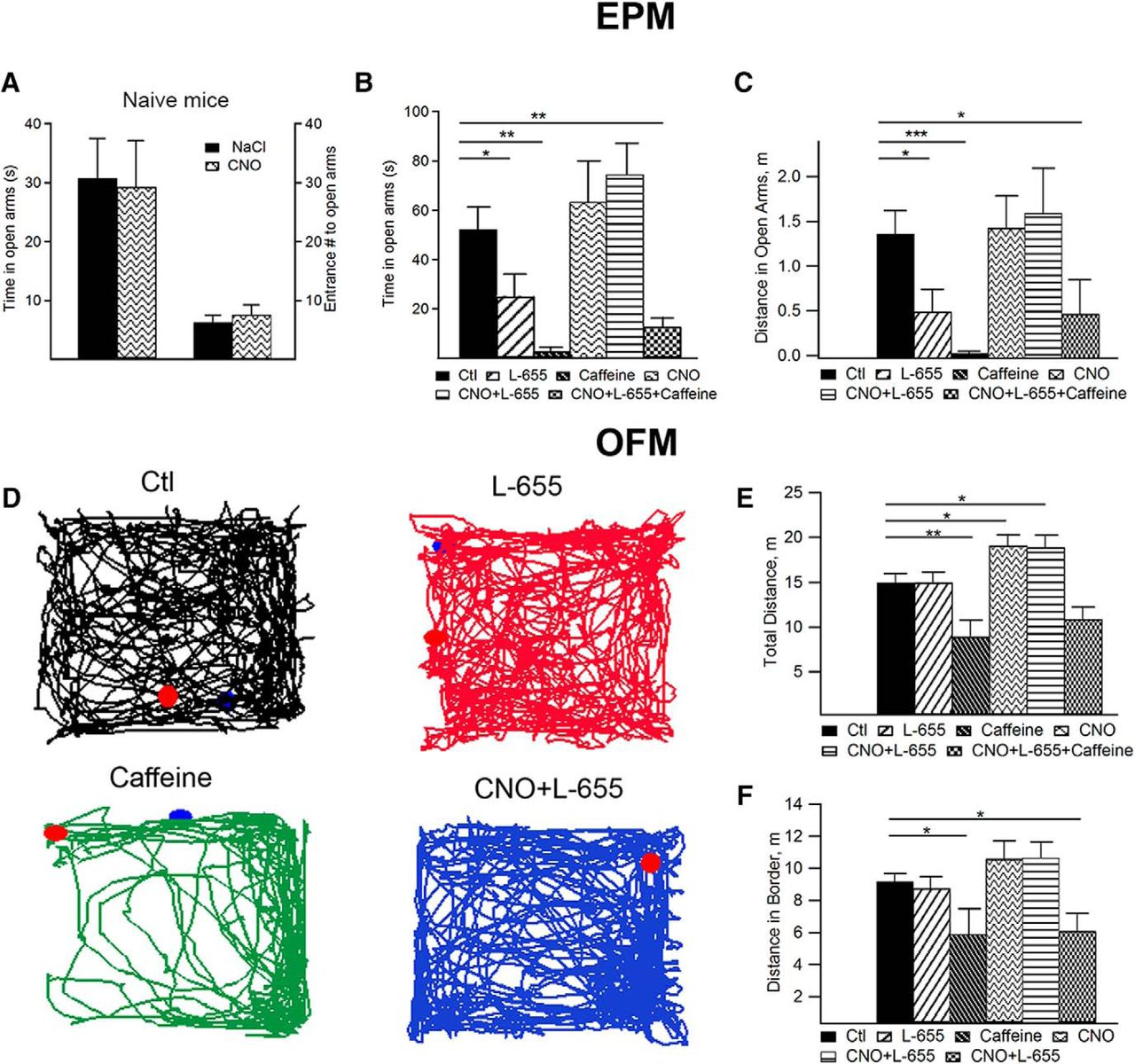 Input-Specific Synaptic Location and Function of the α5