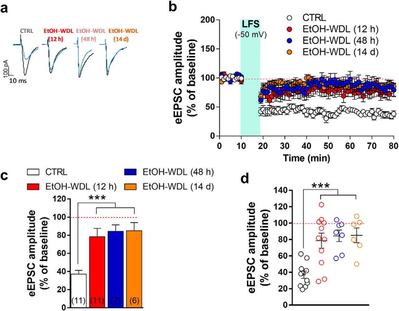 Dopamine Restores Limbic Memory Loss, Dendritic Spine