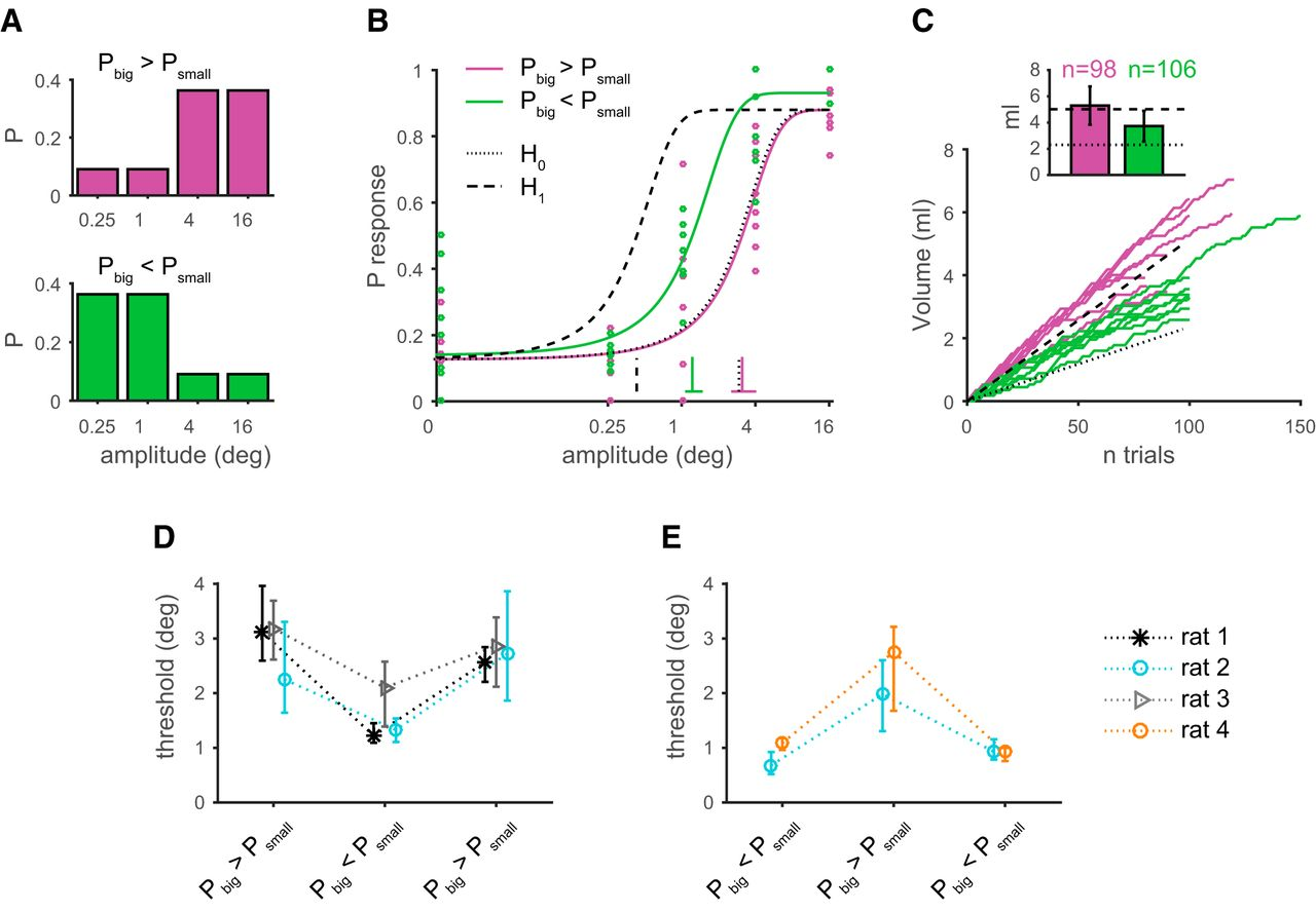 Stimulus Context and Reward Contingency Induce Behavioral