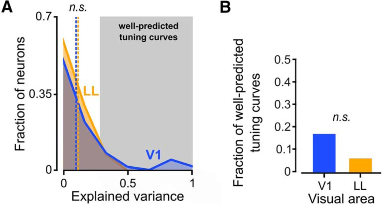 Nonlinear Processing of Shape Information in Rat Lateral