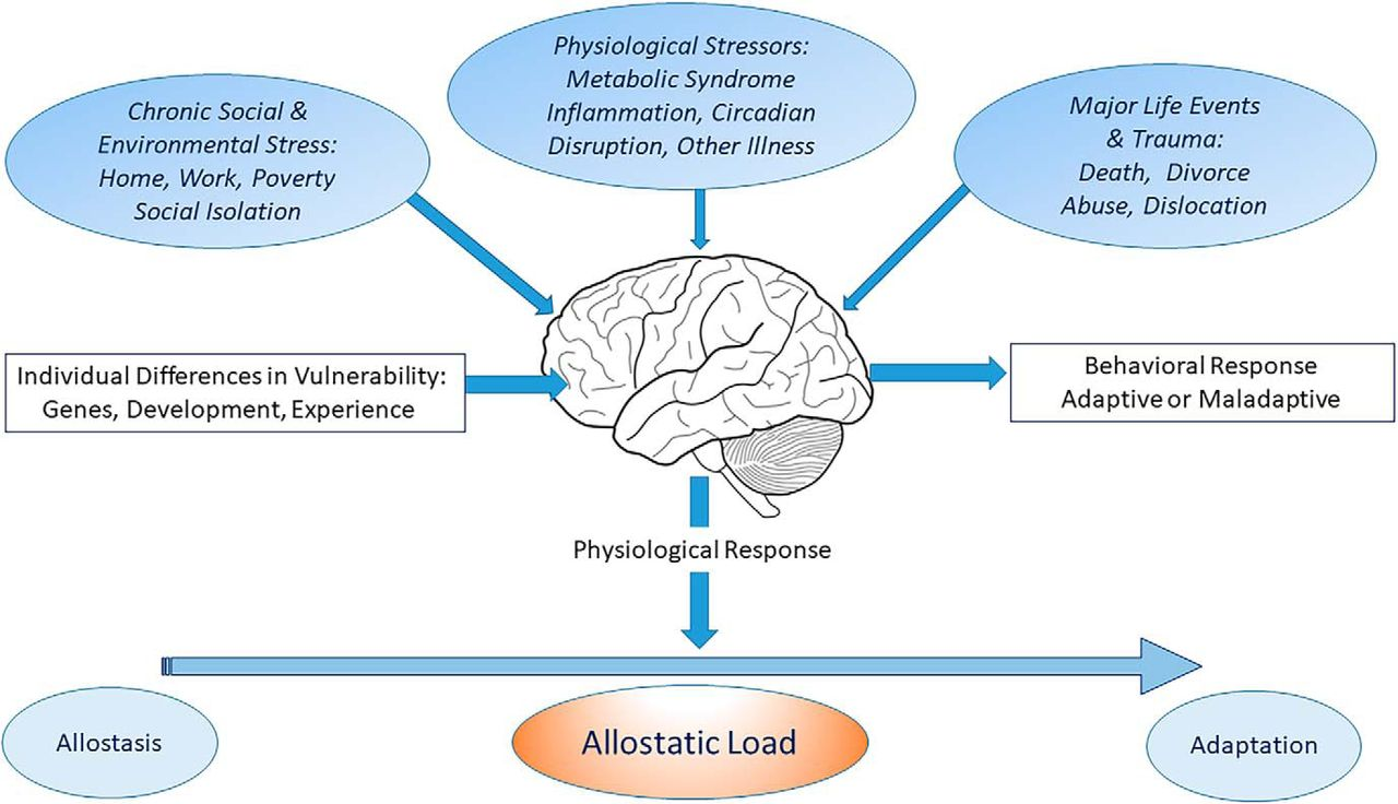 Revisiting The Stress Concept Implications For Affective