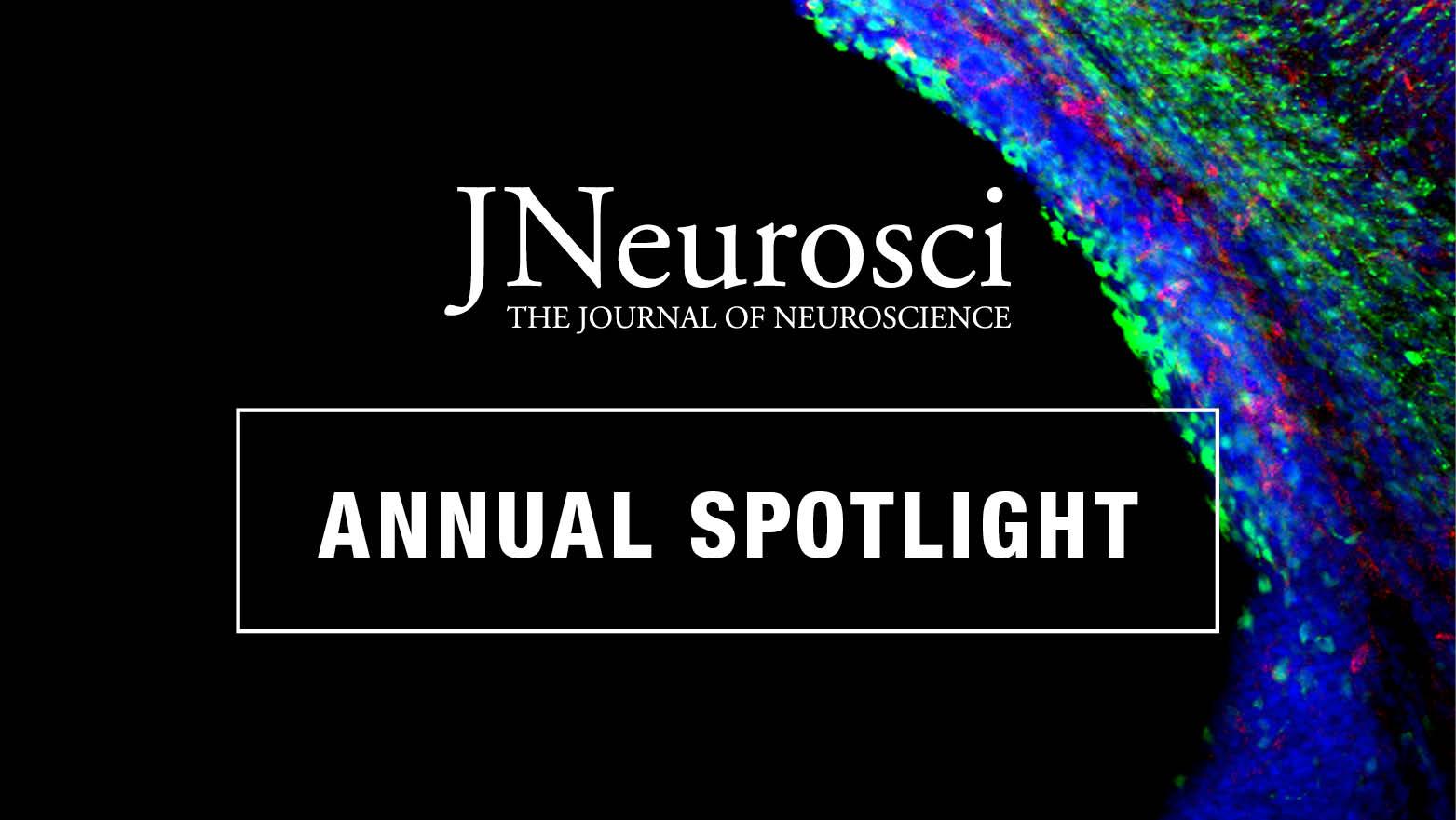 Annual Spotlight Articles