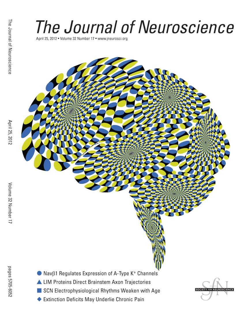 Effective Sensory Modality Activating an Escape Triggering Neuron