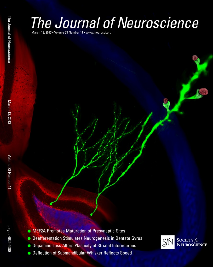 Diverse Visual Features Encoded in Mouse Lateral Geniculate Nucleus