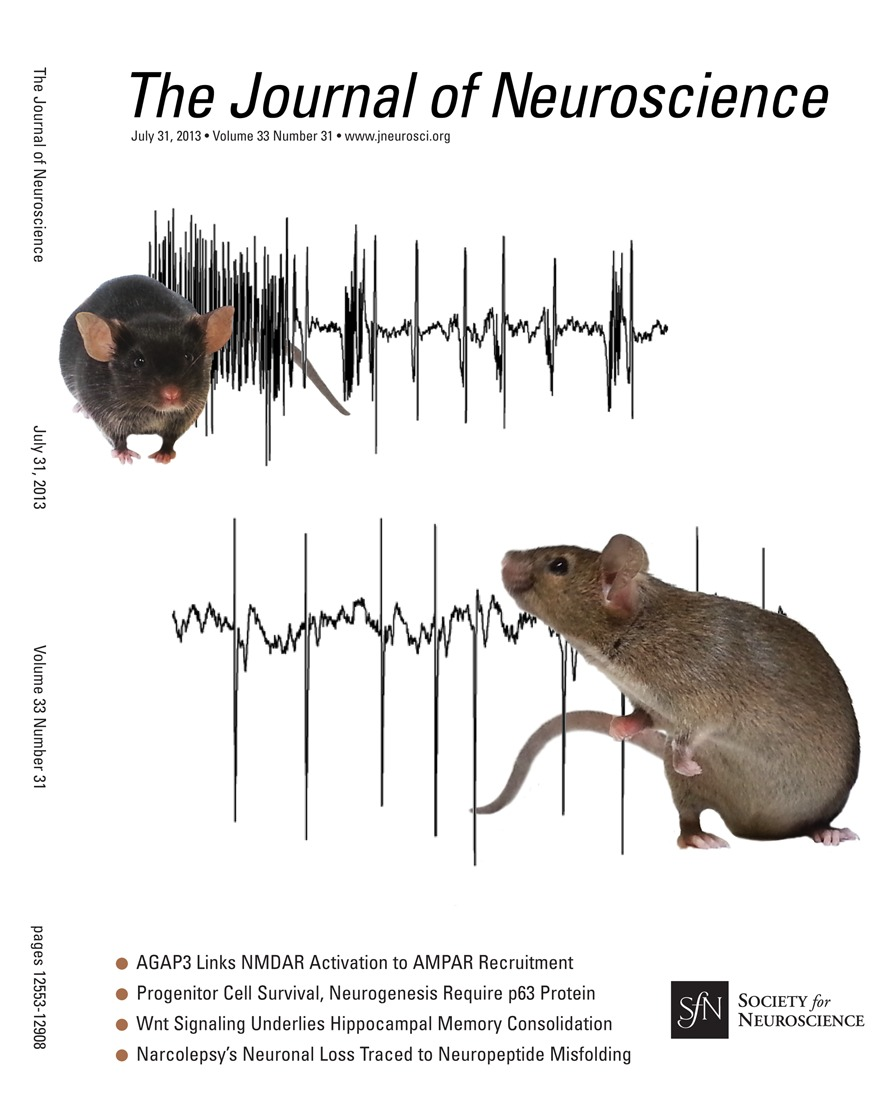 Nitric Oxide Mediates Selective Degeneration of Hypothalamic