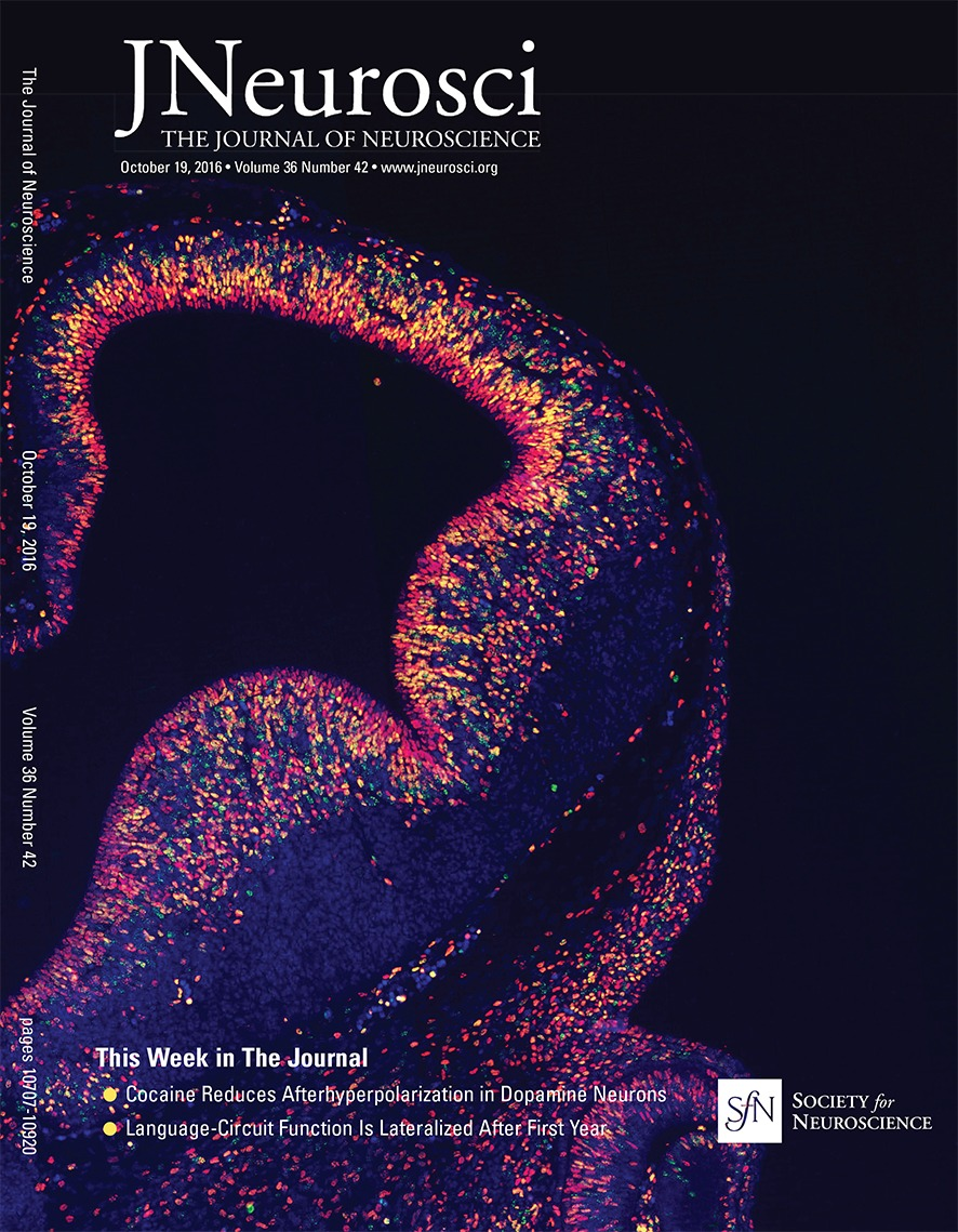 Fatigue In Rapsyn Deficient Zebrafish Reflects Defective Transmitter Go Back Gt Pics For Electric Circuit Symbols Release Journal Of Neuroscience