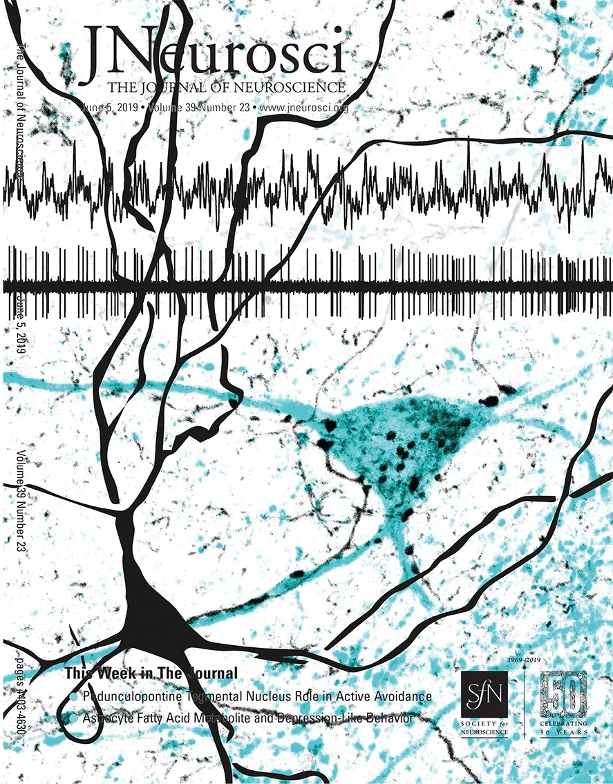 Distinctive Brain Pattern May Underlie >> Characterizing The Molecular Architecture Of Cortical Regions