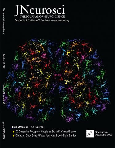 The Journal of Neuroscience: 37 (42)