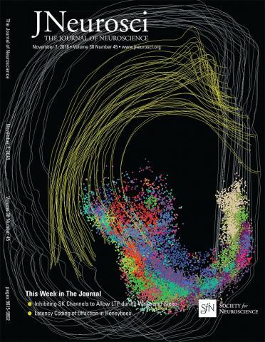 The Journal of Neuroscience: 38 (45)