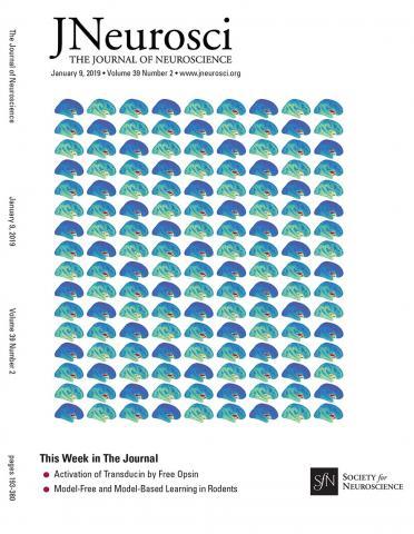 The Journal of Neuroscience: 39 (2)