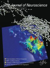 The Journal of Neuroscience: 26 (39)