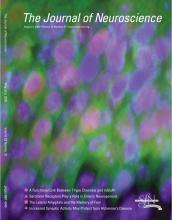 The Journal of Neuroscience: 29 (31)