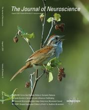 The Journal of Neuroscience: 30 (31)