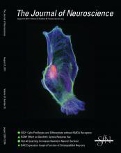 The Journal of Neuroscience: 31 (35)