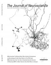 The Journal of Neuroscience: 32 (11)