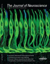 The Journal of Neuroscience: 32 (13)