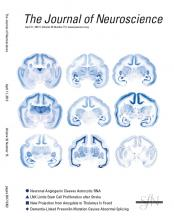 The Journal of Neuroscience: 32 (15)