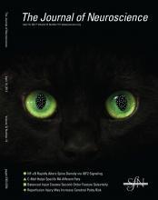 The Journal of Neuroscience: 32 (16)