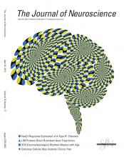 The Journal of Neuroscience: 32 (17)