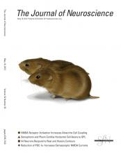 The Journal of Neuroscience: 32 (20)