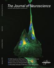 The Journal of Neuroscience: 32 (23)