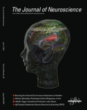 The Journal of Neuroscience: 32 (28)