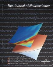 The Journal of Neuroscience: 32 (29)
