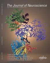 The Journal of Neuroscience: 32 (33)