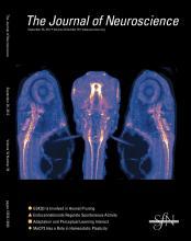 The Journal of Neuroscience: 32 (39)