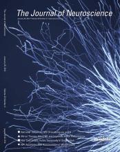 The Journal of Neuroscience: 32 (4)