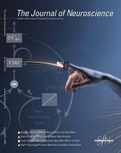 The Journal of Neuroscience: 32 (40)