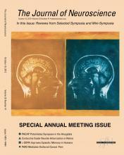 The Journal of Neuroscience: 32 (41)
