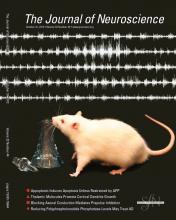 The Journal of Neuroscience: 32 (44)